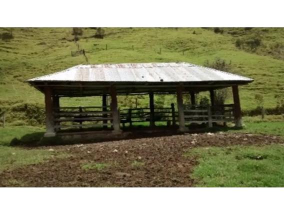 Finca de 326 has en El Cerrito, Valle del Cauca